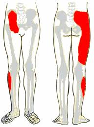 hogyan gyógyítható az artrózis a medencei ízületekben