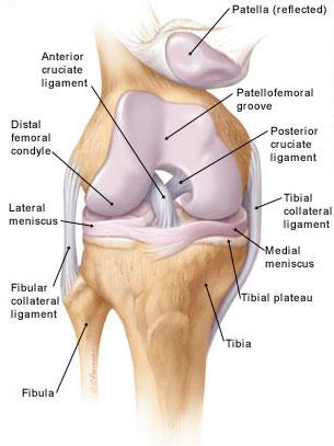 ízületi gyulladás és a térd osteoarthritisének kezelése