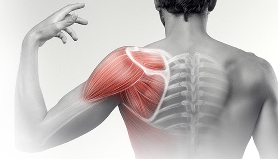 hogyan lehet eltávolítani a vállízület fájdalmait