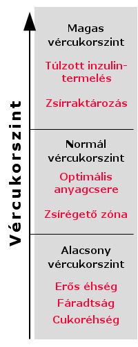 Fülakupunktúra