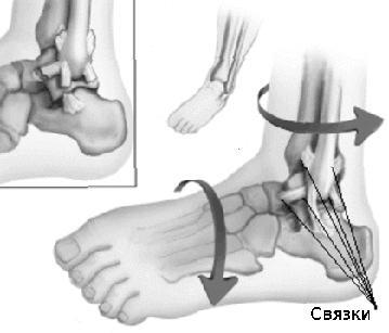 Boka és láb panaszok - Balance Mozgásterápiás és Sport Innovációs Központ