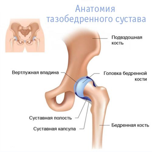 a kiálló fájdalom a csípőízületre sugárzik)