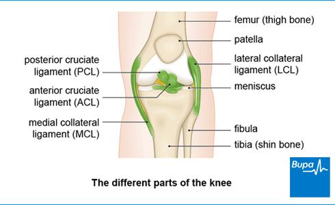 osteoarthritis treatment uk)