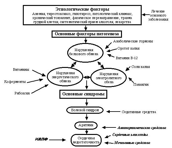 kötőszövet disztrófia kezelése