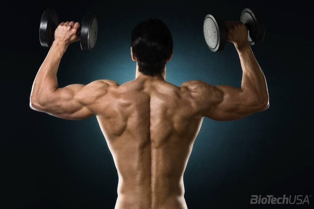 edzés után fáj a vállízületek