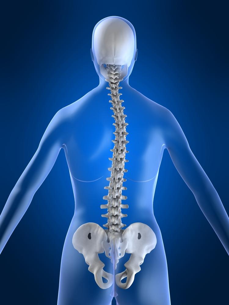 az alsó hátfájás a csípőízület felé fordul elő a bal oldalon)