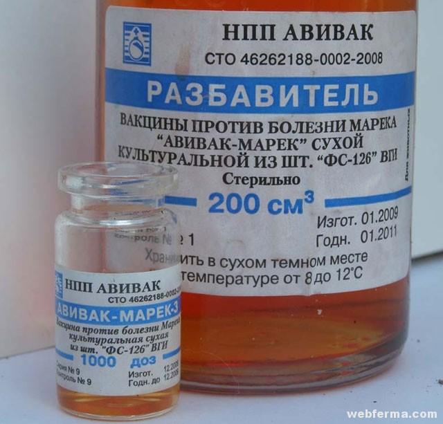 Antibiotikumok arthrosisra és ízületi gyulladásra