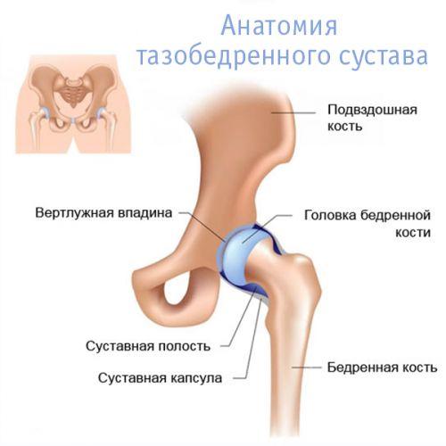 a kiálló fájdalom a csípőízületre sugárzik