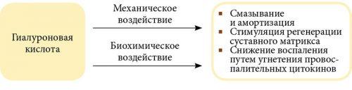 gyógyszereknek a térdízületbe történő injektálásának módszerei)
