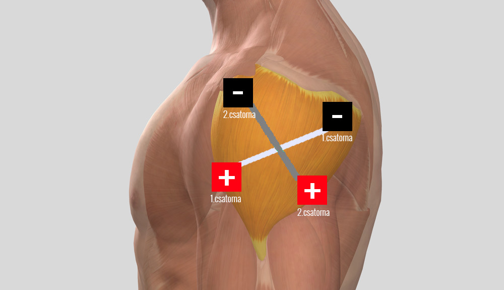 a vállízület tünetei kezelés periarthritis