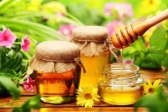 Az európai méhészek védelmében - Támogatott magyar javaslat Brüsszelben