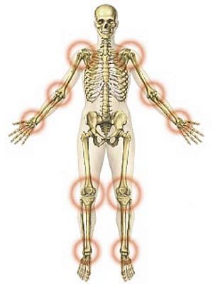 az ízületek porcépítésének előkészítése legjobb kenőcs az ízületi fájdalom fórumában