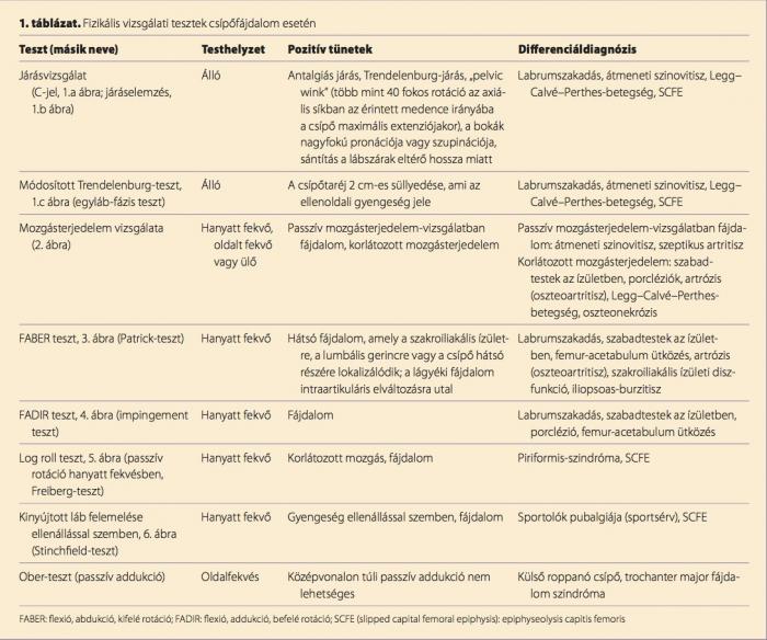 csípőízület és annak betegségei