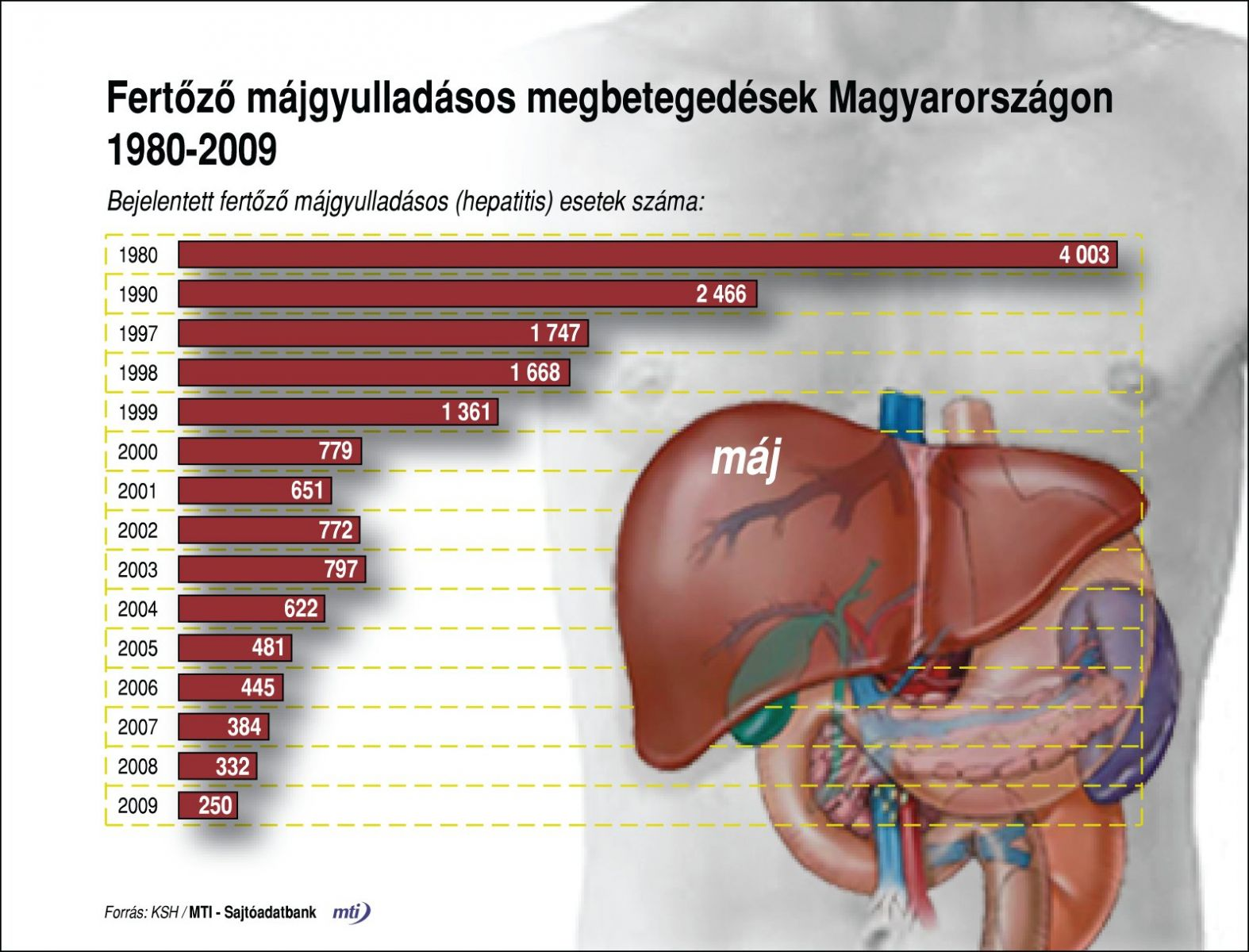 hepatitis ízületi fájdalom fóruma