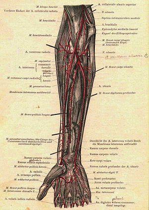 mi van az ujjak artritiszével ujjízületek fájnak egy kenőcs kezelés