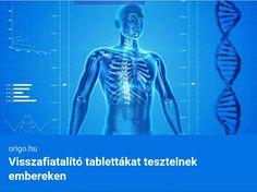 nanotechnológia az ízületek kezelésében)