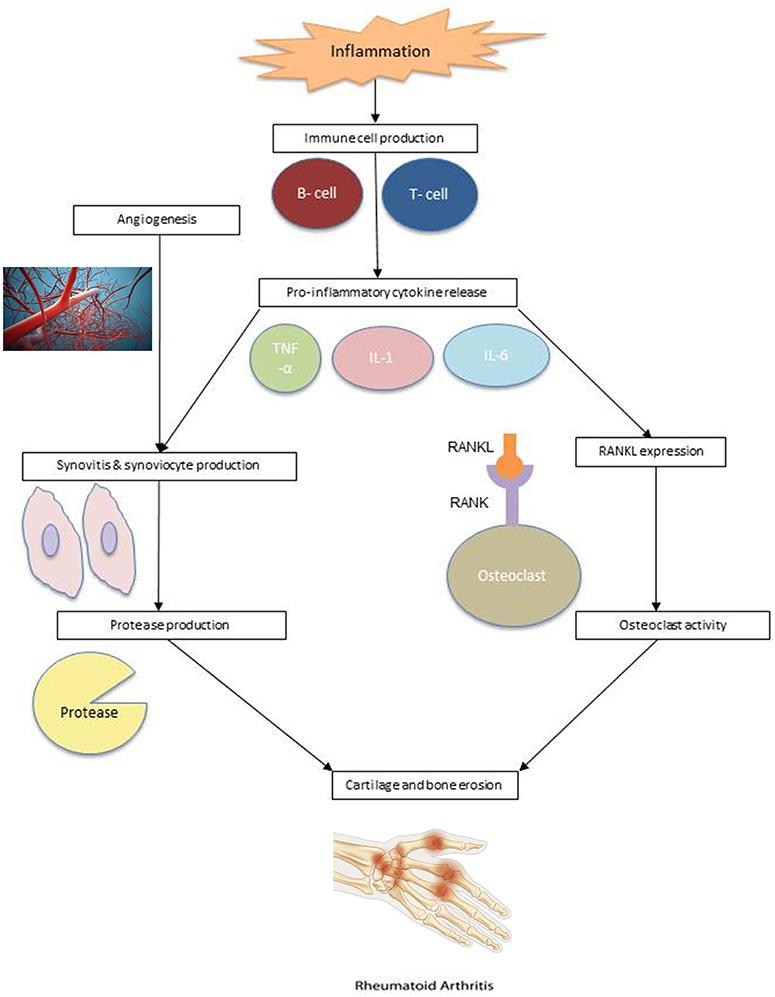 Klinikai vizsgálatok a Arthritis, reaktív - Klinikai vizsgálatok nyilvántartása - ICH GCP