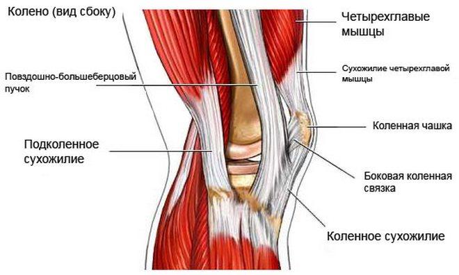térd ligamentum-törések kezelése)