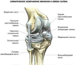 térdízület fájdalomcsillapítói terápiás gyakorlatok térdfájdalomra