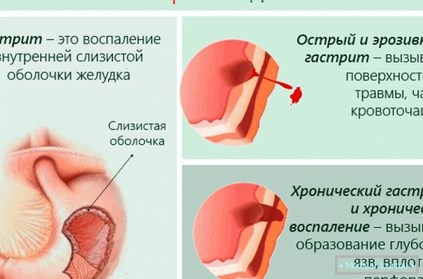 seovizsgalat.hu :: tanulmányok