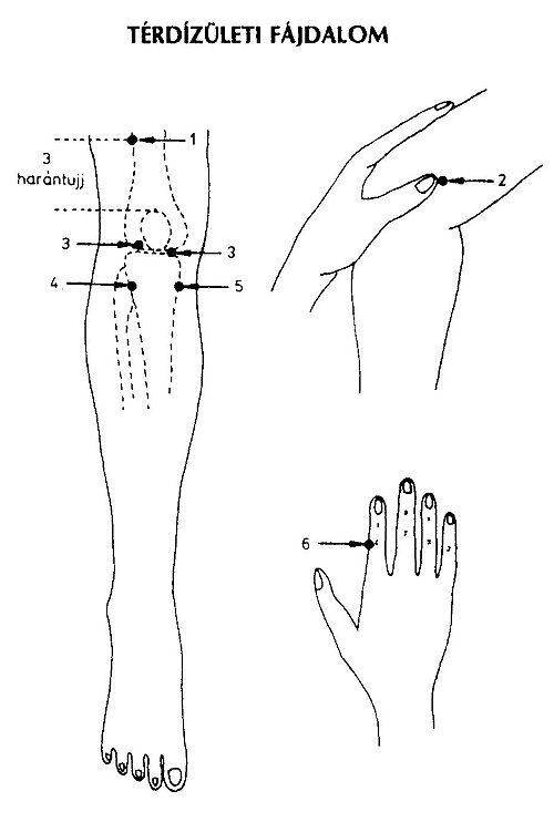 térdízületi pitypang kezelése