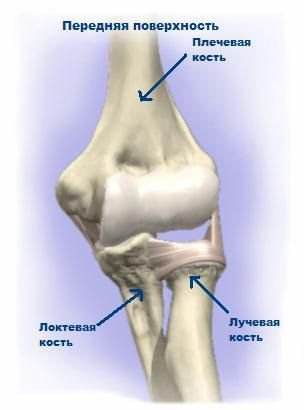 a karok ízületei megnagyobbodtak és fájnak artrózis kezelése réz-szulfáttal