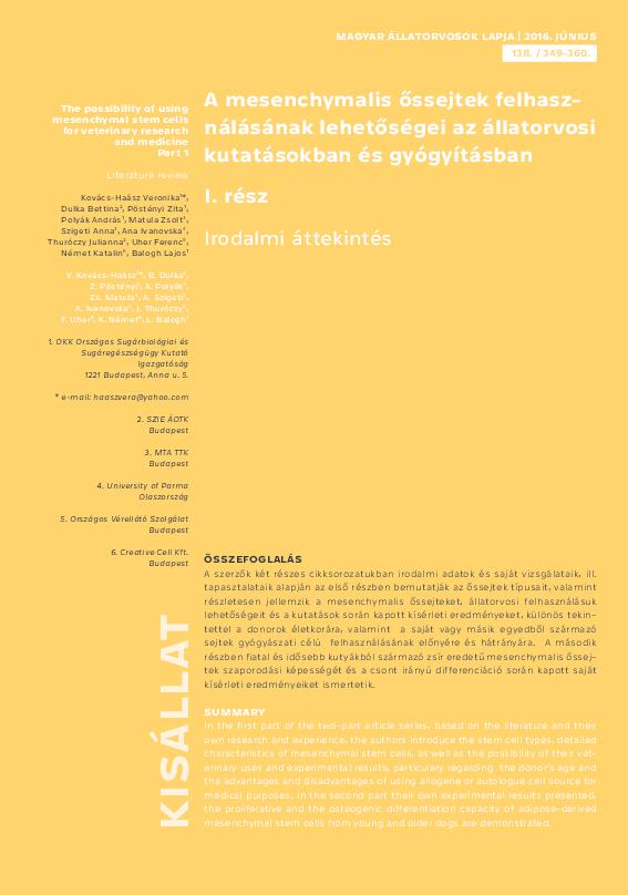 csípőízületi őssejtek)