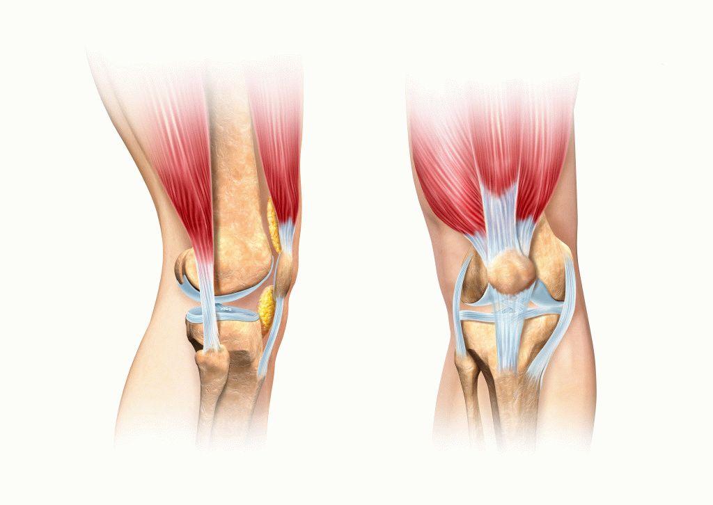 mi a teendő, ha a csípőízület fáj