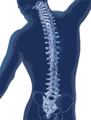 a karok ízületei megnagyobbodtak és fájnak csípőfájdalom, amely áthalad a hát alsó részén